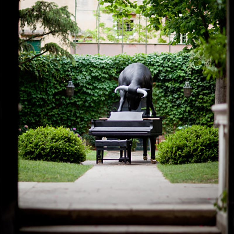 Life size, black Spanish fighting bull in bronze, weighing 754 kilograms, standing on a concert grand piano presented in the garden of Palazzo Loredan dell'Ambasciatore with high ivy hedge in the background.